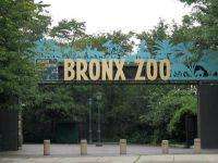 Världens största zoo